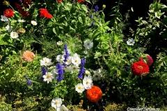 tufa-granada-generalife-flowers