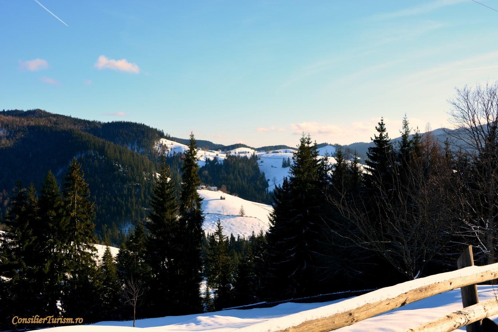 landscape bucovina