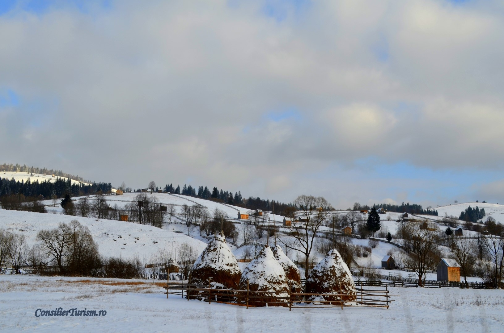 rural Bucovina