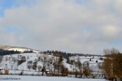 bucovina hills winter